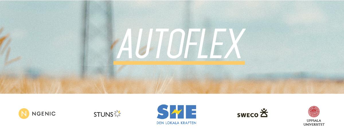 Autoflex 1